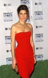 Marisa Tomei Formal Updo Peoples Choice Awards Red Carpet Hairstyle
